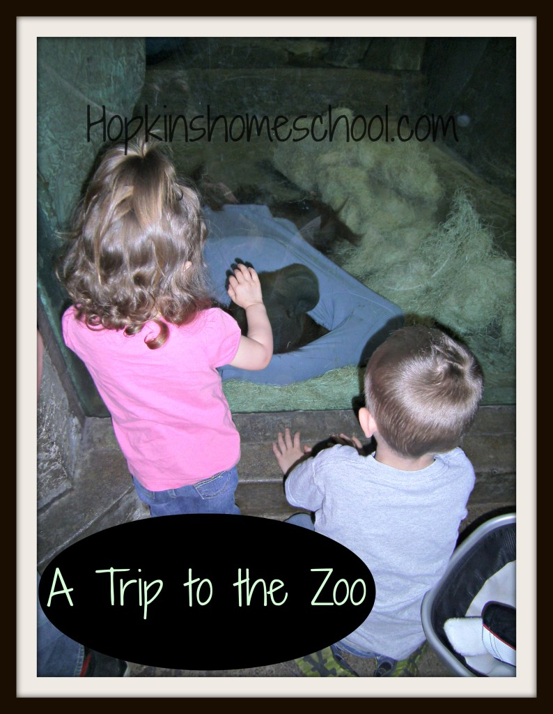 A Visit to the Zoo