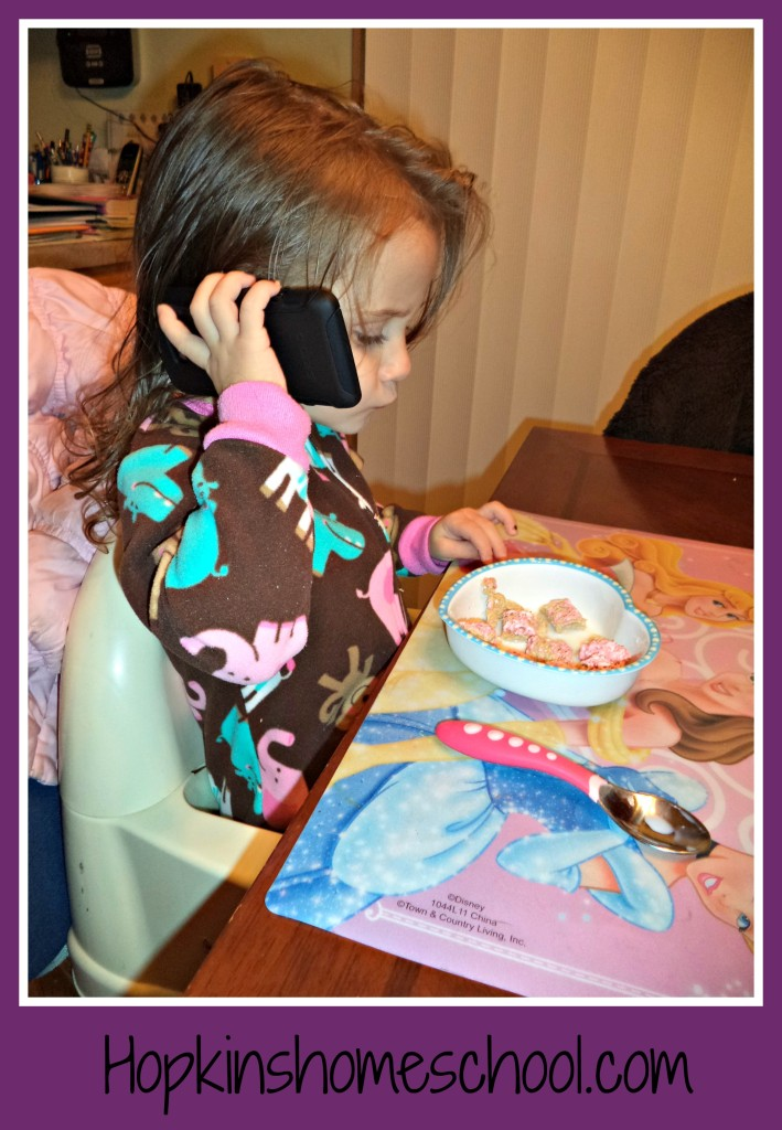 The Homeschool Mother's Journal ~ November 23, 2013