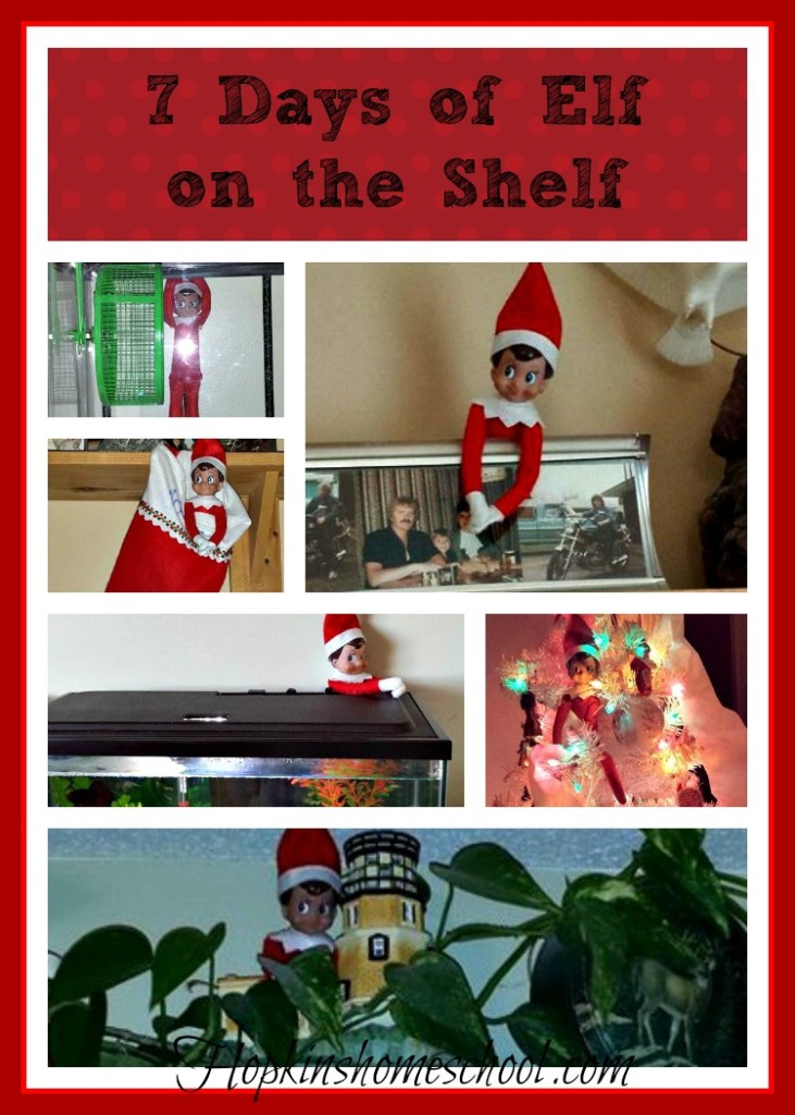 7 Days of Elf on the Shelf
