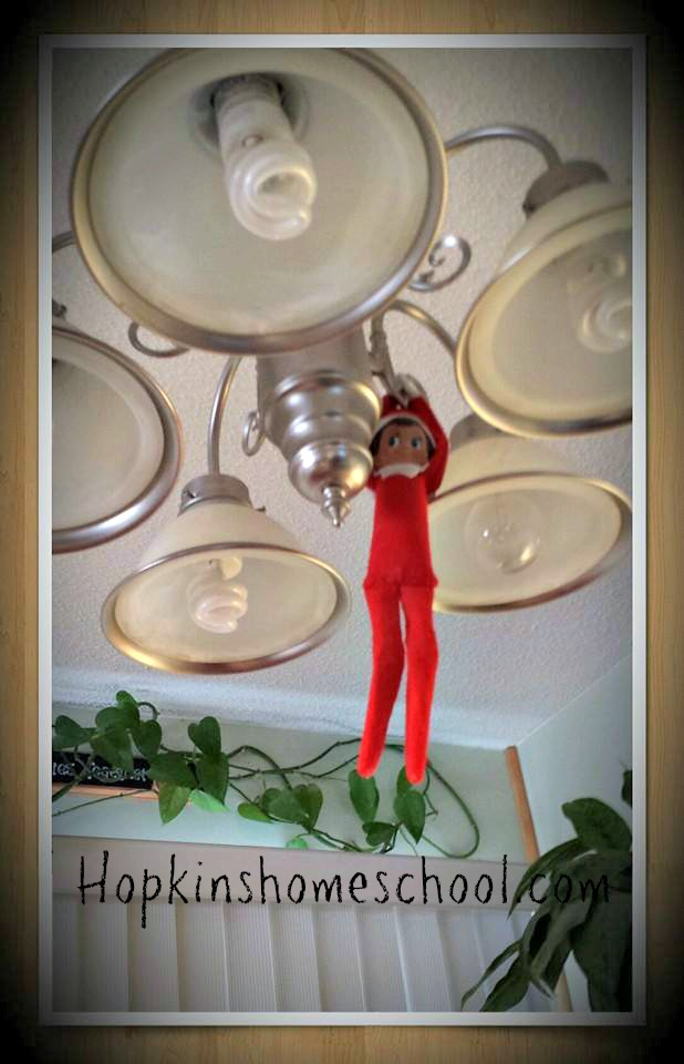 Elf on the Shelf ~ Wordless Wednesday