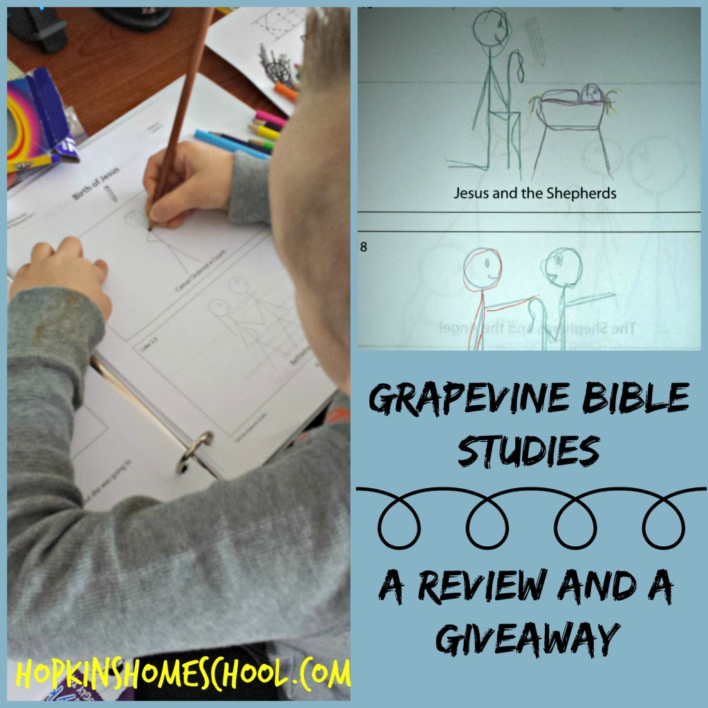 Grapevine Studies ~ Review and GIVEAWAY