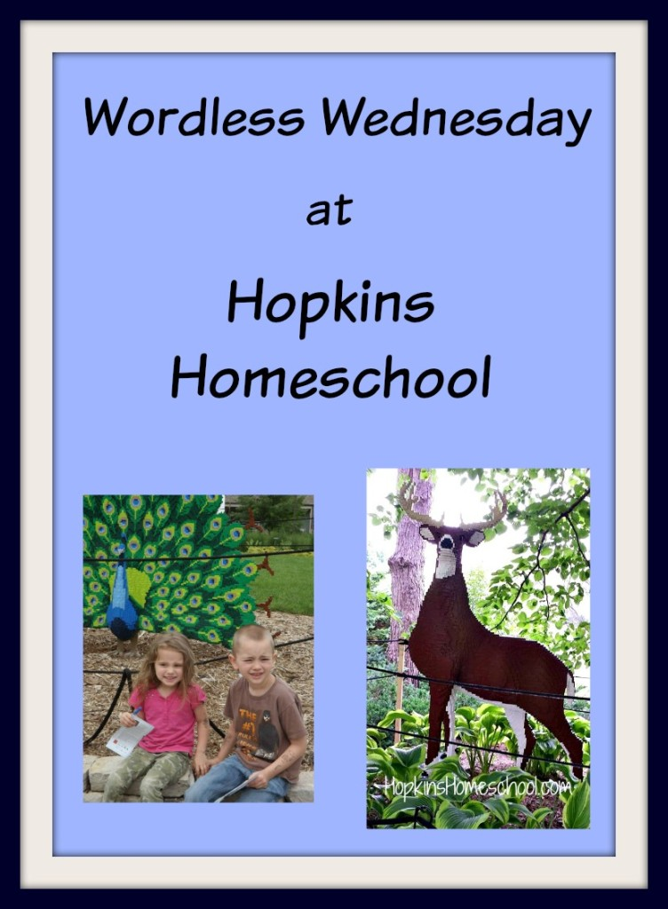 Wordless Wednesday July 2015
