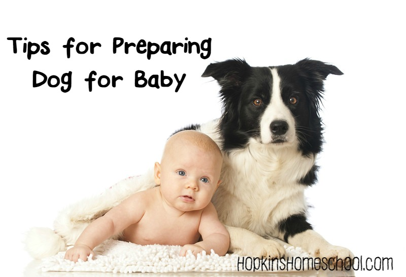 Tips for Preparing Puppy for Baby