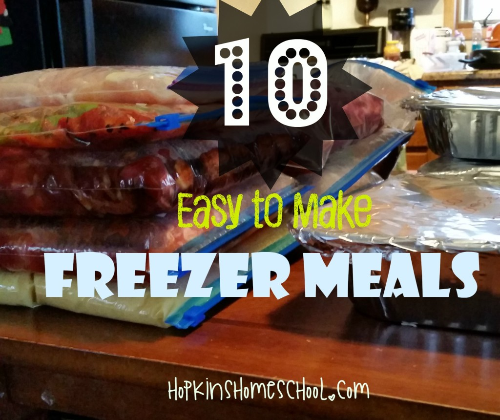 10 Easy to Make Freezer Meals