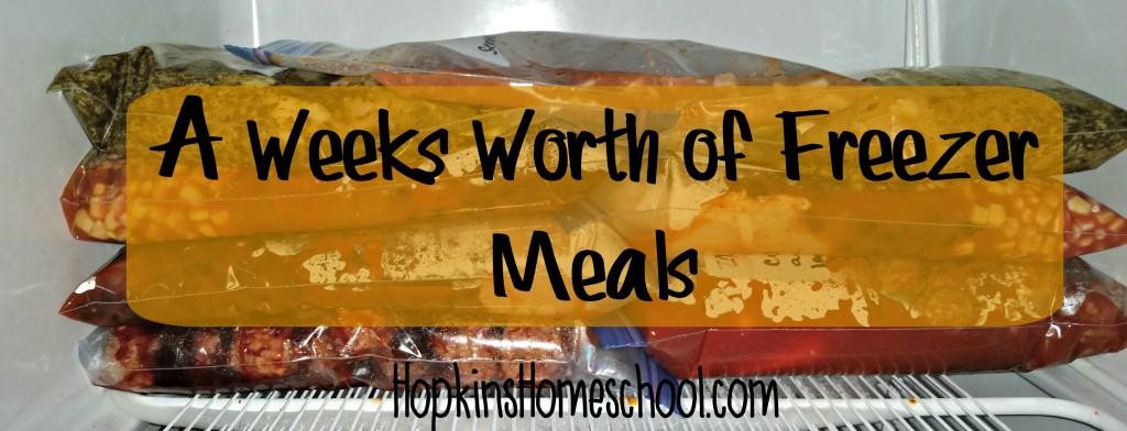 A Weeks Worth of Freezer Meals for February 2, 2016