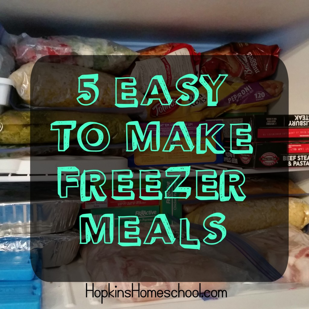 5 Freezer Meals for the Week