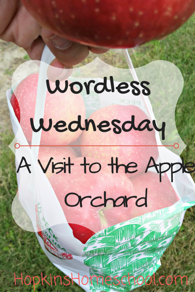 Wordless Wednesday ~ A Day at the Apple Orchard