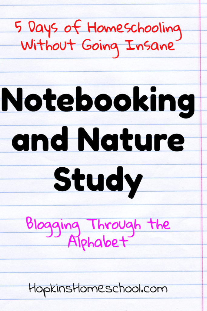 5 Days of Homeschooling Without Going Insane ~ Notebooking and Nature Studies
