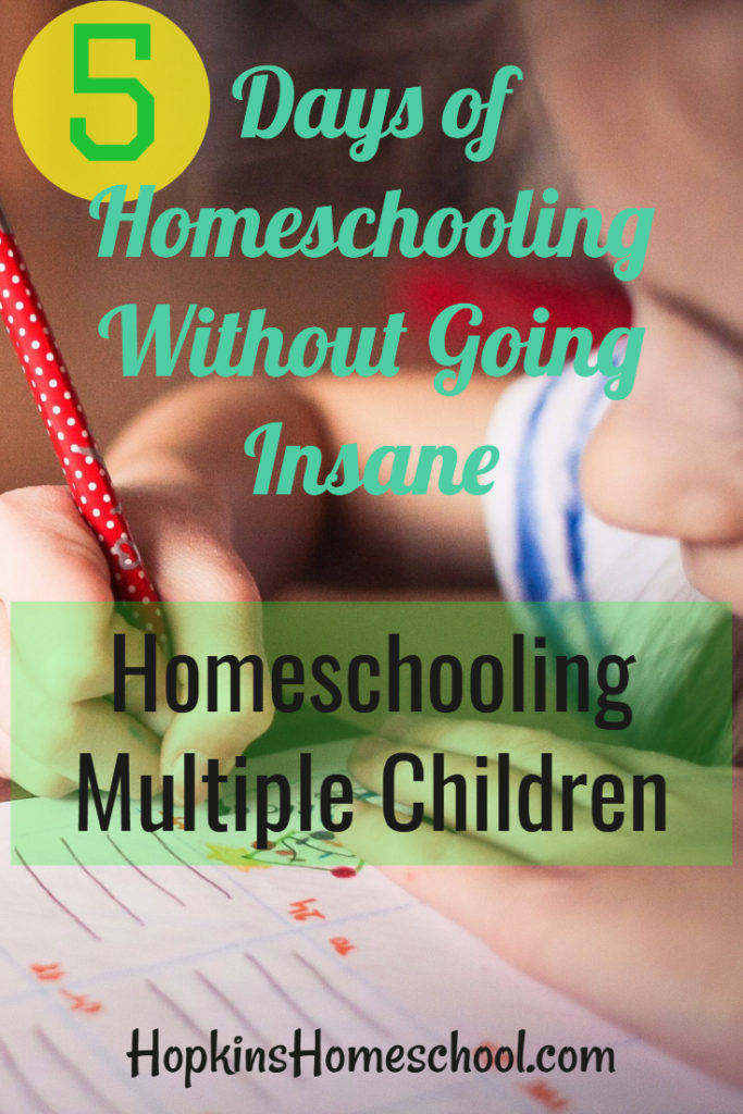 5 Days of Homeschooling Without Going Insane ~ Tips for Homeschooling Multiple Children