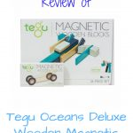 Tegu Oceans Deluxe Wooden Blocks – A Review