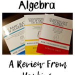 The Doodles Do Algebra – A Review