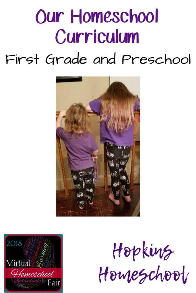 2018 Homeschool Curriculum – First Grade and Preschool